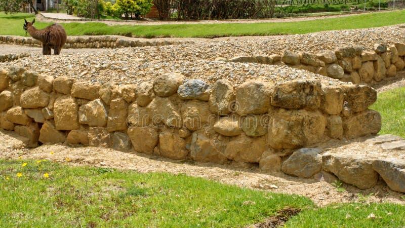Stone walls at Ingapirca. Stone walls at the ruins of Ingapirca, outside of Cuenca, Ecuador royalty free stock image