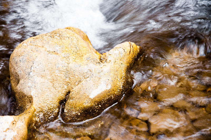 Download Stone in the water stock photo. Image of hand, shape - 23900020