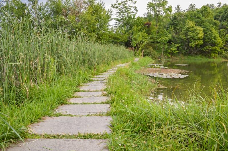 Stone zen path stock photo