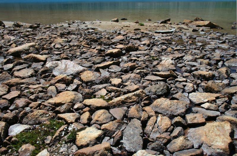 Stoned lake shore. Close up stock image
