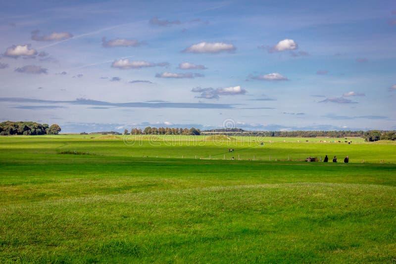 Stonehenge in Inghilterra fotografia stock