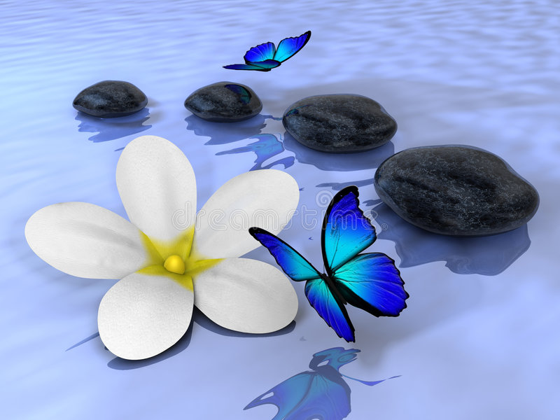 Stones 5. A flower, butterflys and four stones on water - renderend in 3d vector illustration