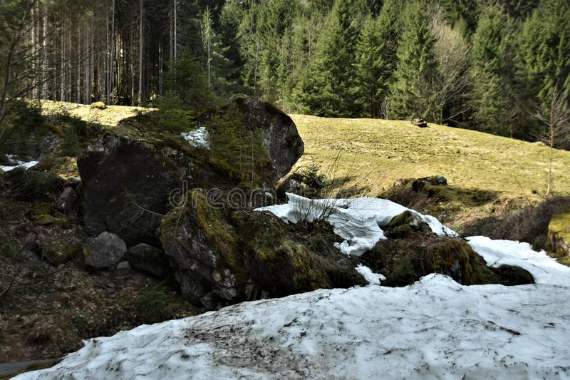 Stones covered with moss and snow on the alps meadow from tourist path towards to Murg lakes royalty free stock images