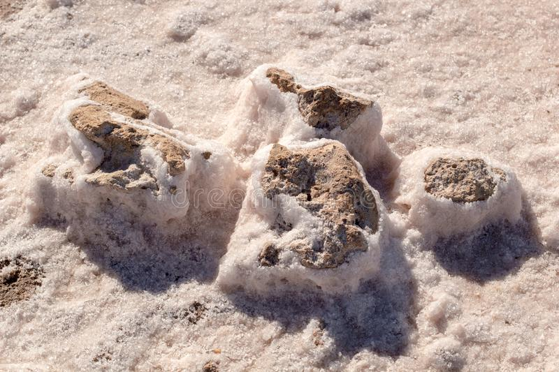 Stones covered by natural pink salt crystals, close up. Salty lake shore background. Spain, Torrevieja stock photos