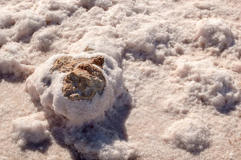 Stones covered by natural pink salt crystals, close up. Salty lake shore background. Spain, Torrevieja royalty free stock photos