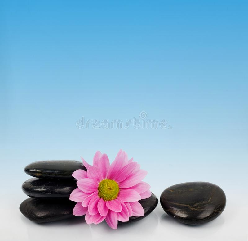 Stones and flower for SPA stock photos