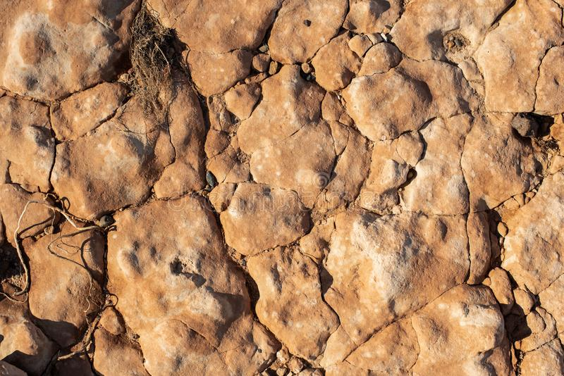 Cracked petrified clay soil as background stock photo