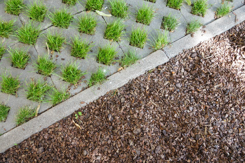 Stones grass and sod, background. Nature in the city. Grass living throughout the stones royalty free stock images