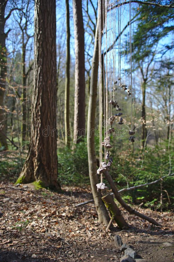 Stones hanging in the woods near Freiburg, Germany royalty free stock photography