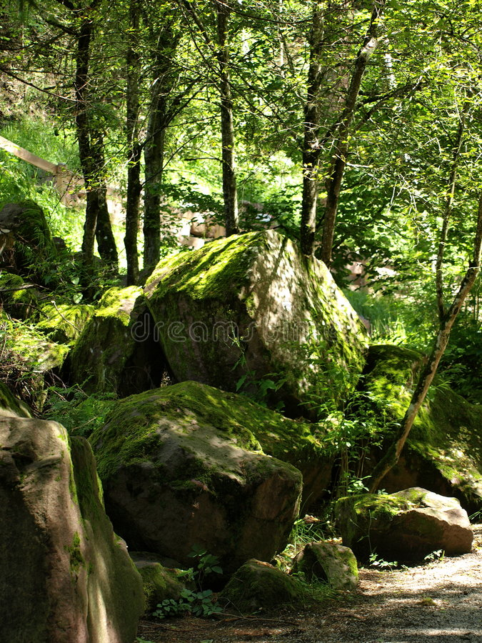Free Stones In A Forest Royalty Free Stock Photography - 5875647
