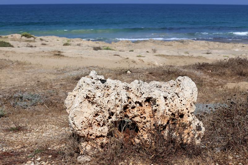 Stones lie in a park on the shores of the Mediterranean Sea. In the north of Israel stock photos