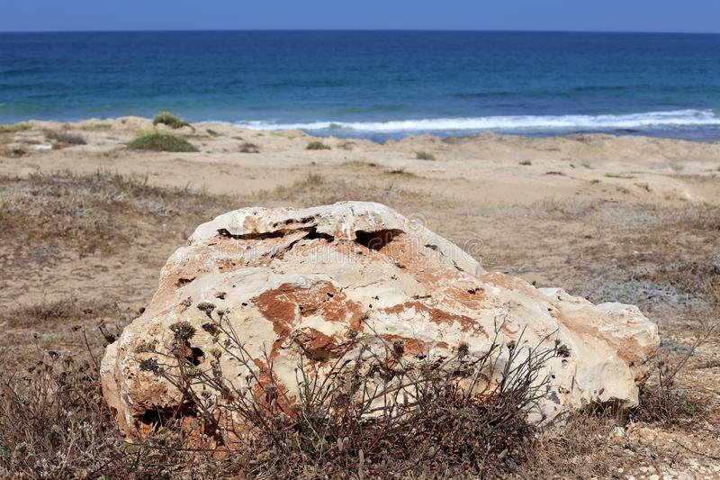 Stones lie in a park on the shores of the Mediterranean Sea. In the north of Israel royalty free stock photography