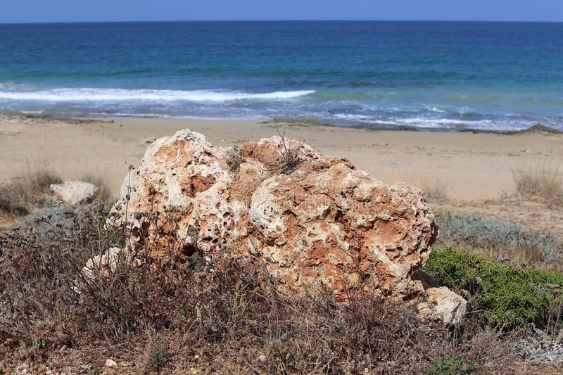 Stones lie in a park on the shores of the Mediterranean Sea. In the north of Israel royalty free stock photos