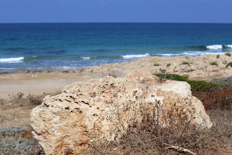 Stones lie in a park on the shores of the Mediterranean Sea. In the north of Israel stock images