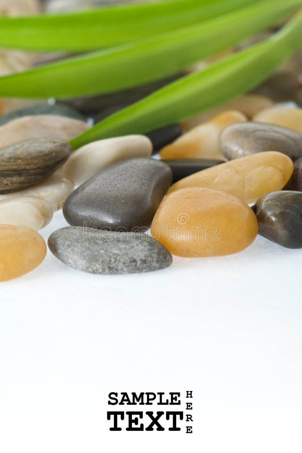 Download Stones and long leafs stock image. Image of leafs, yellow - 7630495