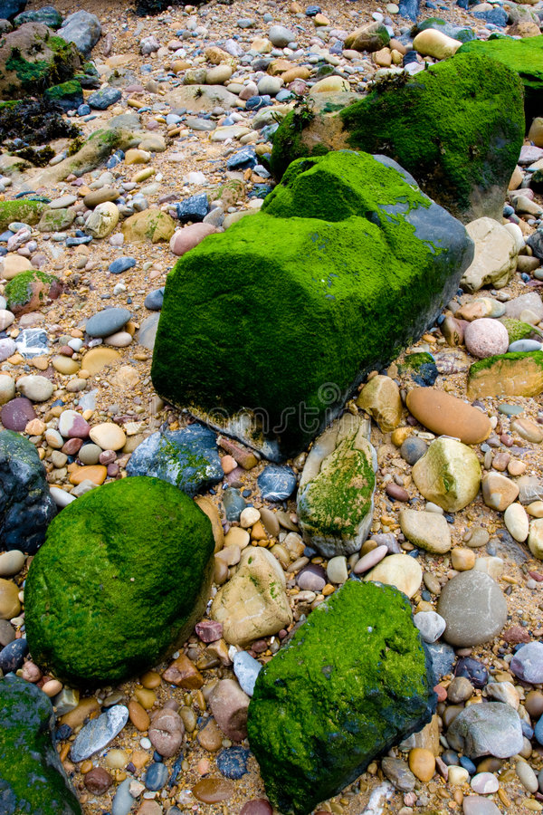Stones and mosses royalty free stock image