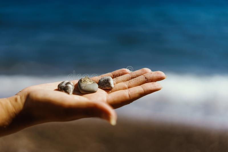 Stones in a palm. stock image