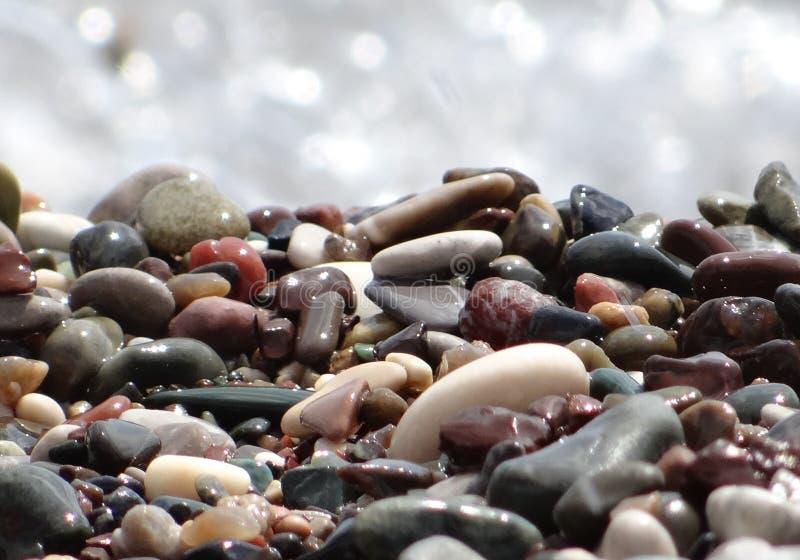 Stones, pebbles on the seashore. Wet sea stones glisten in the sun. royalty free stock image