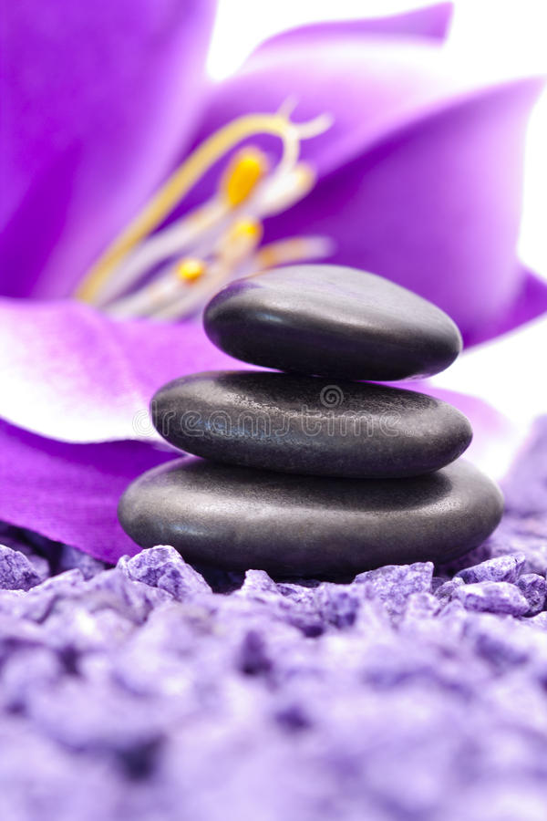 Stones with purple flower. Violet flower stones and relaxing spa environment stock image