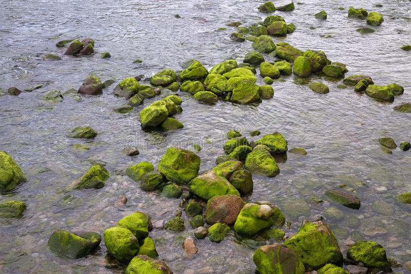 Stones in river. stock image