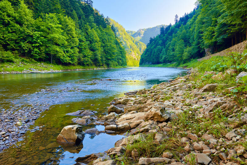 Stones and rocks in the morning in The Dunajec Riv. Stones and rocks in the beautiful morning in The Dunajec River Gorge. The Pieniny Mountains, Carpathians royalty free stock photos