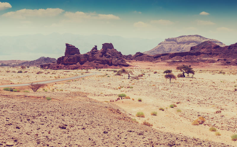 Stones and rocks in Timna park, Israel royalty free stock photography