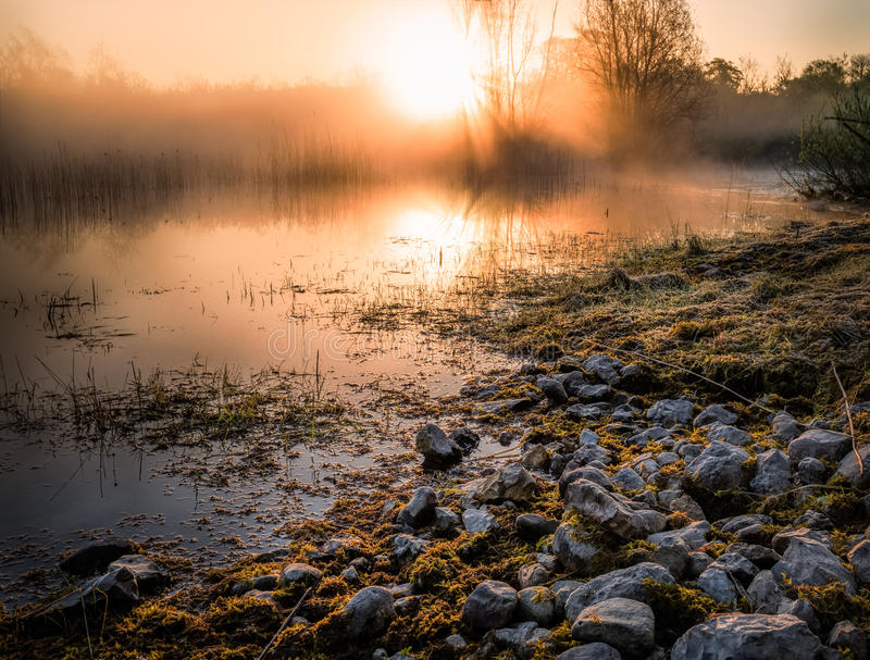 Stones in a swamp before the rising sun royalty free stock photography