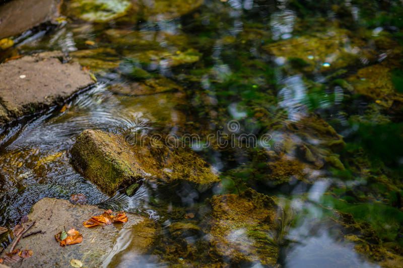 stones in water royalty free stock image