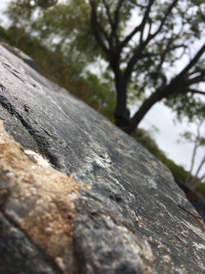 stonewall foto de stock royalty free