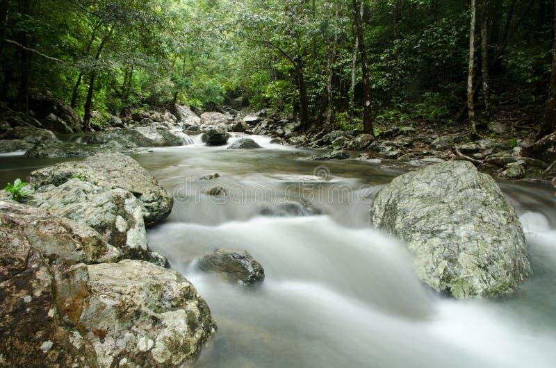 Stoney Creek 1 royaltyfri foto