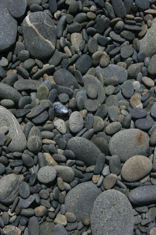 Stoney Shore arkivfoto