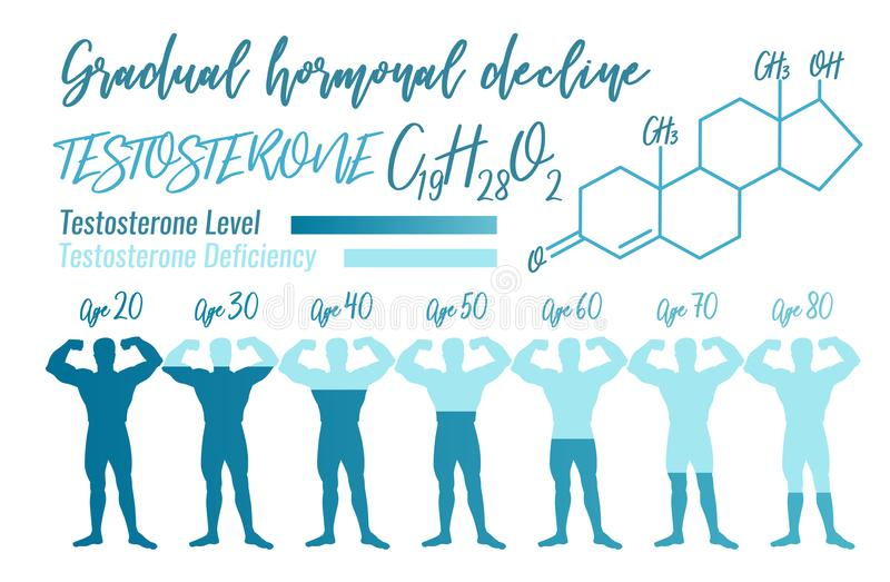 Stoniowy hormonu spadek royalty ilustracja