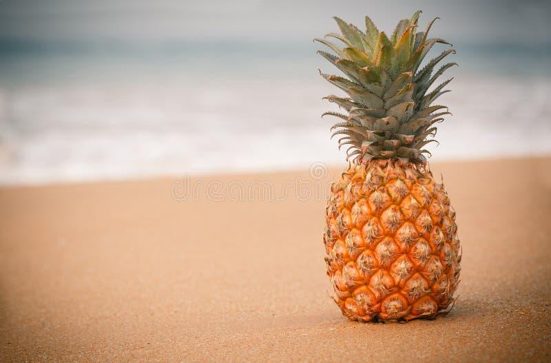 Stonowana fotografia ananas obraz stock