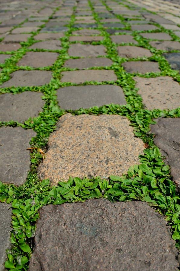 Download Stony street in Heidelberg stock photo. Image of ground - 25505328