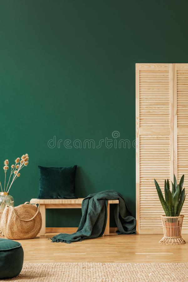 Cushion in green living room interior with plant and rattan bag. Real photo. Stool with blanket and cushion in green living room interior with plant and rattan royalty free stock photo