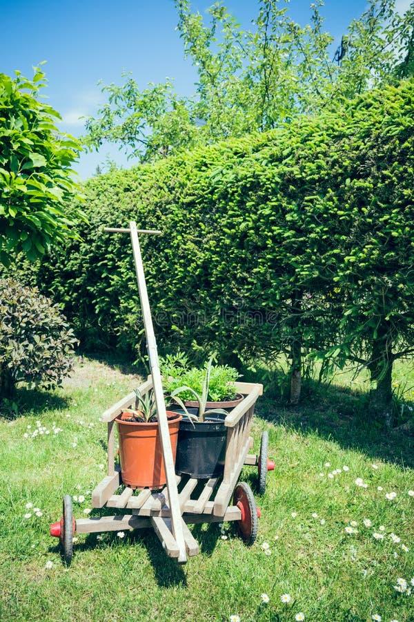 Stootkar met bloempot stock foto