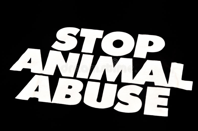 Stop animal abuse. A photo taken on a`stop animal abuse`message. Letters are in white against a black backdrop stock image