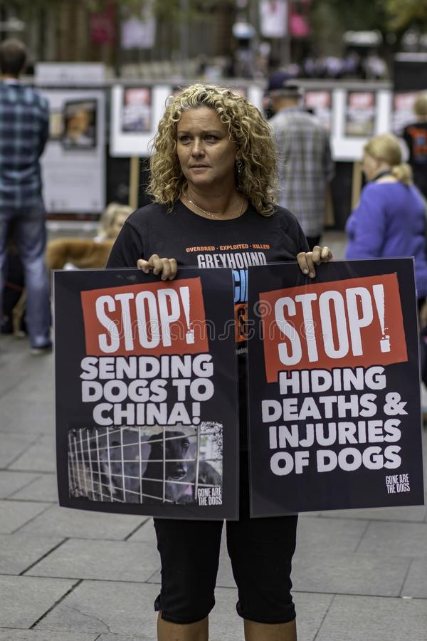 Stop Greyhound Racing. At Martin Place Sydney Australia 2/5/14. a Protest against greyhound racing and killing or sending the non performing dogs to China stock images