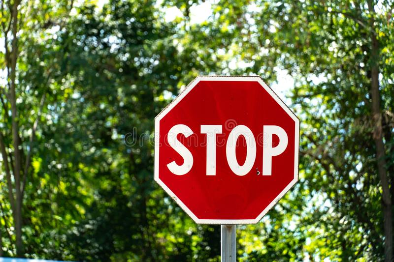 Stop signal. Stop sign with trees on background stock photos