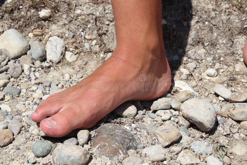 stopa zdjęcie stock