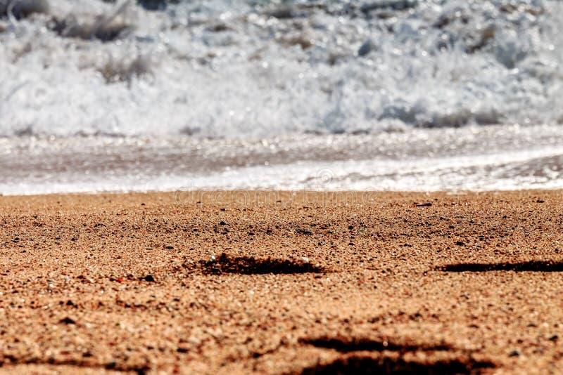 Stopa kroki na piasku zdjęcia royalty free
