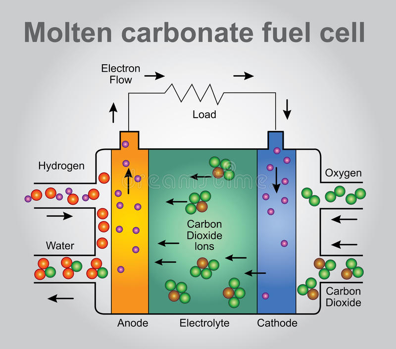 Stopeni węglanowi ogniwa paliwowe ilustracja wektor