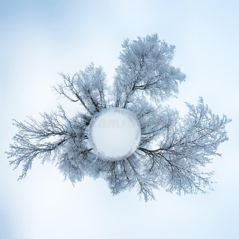 360 stopni panorama, mały planety kuli ziemskiej zimy lasu krajobraz obrazy royalty free