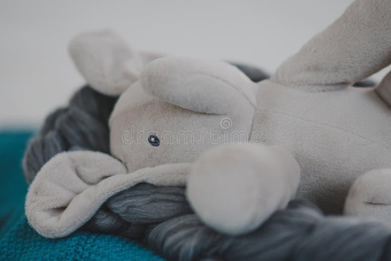 stoppad elefant arkivfoto