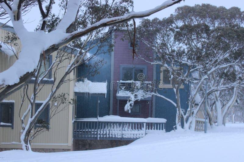 Stoppat bort i snö fotografering för bildbyråer
