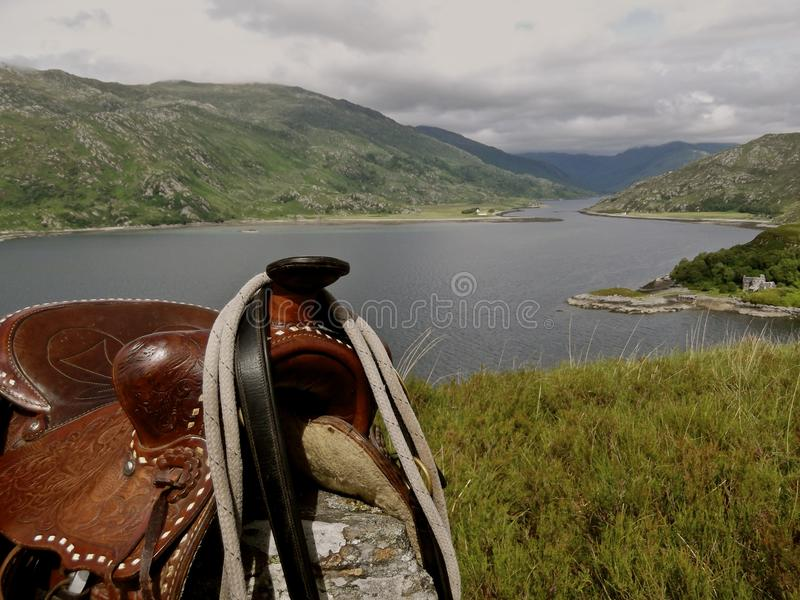 Stopped to give the horse a break stock photo