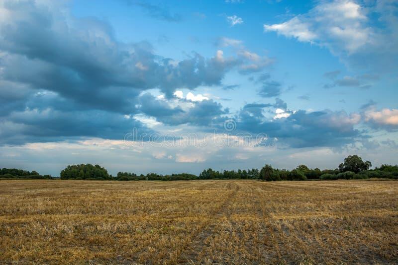 Stoppelveld en wolken in de hemel royalty-vrije stock foto