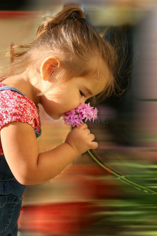 Stoppen Sie, um die Blumen zu riechen stockfotos
