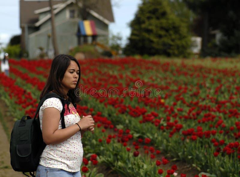 Stoppen, zum der Blumen zu riechen. lizenzfreie stockbilder