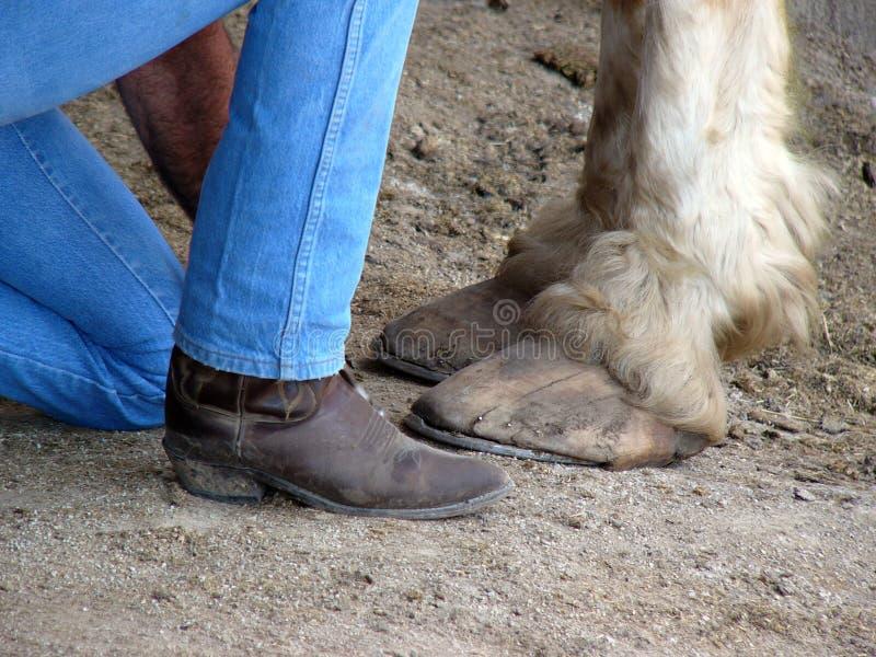 stopy obrazy stock